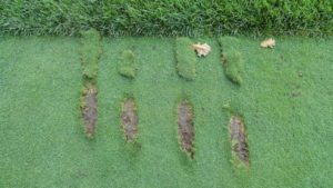 What Your Divot Can Tell You About Your Swing